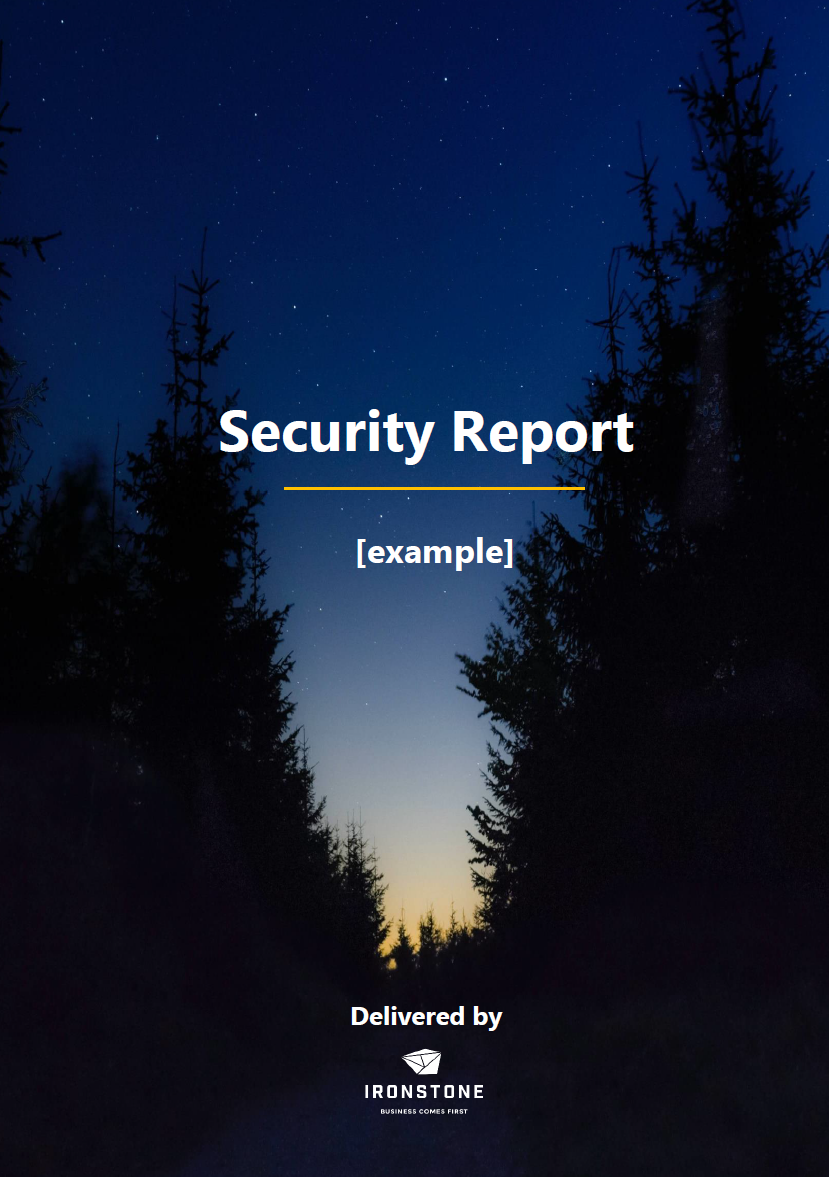 security report example page